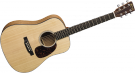Martin & Co Guitare D-JR